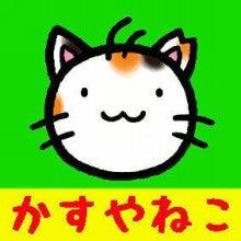 セロームのブログ ペットシッター 福岡筑豊店 -かすやねこさん
