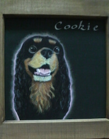 Cookieのお嬢な毎日