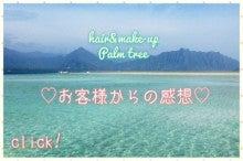 $千葉県 柏市 美容室パームツリーpalm tree     『Aloha Diary』-image
