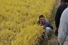 浄土宗災害復興福島事務所のブログ-2013100506ふくスマ稲刈り⑥農家説明