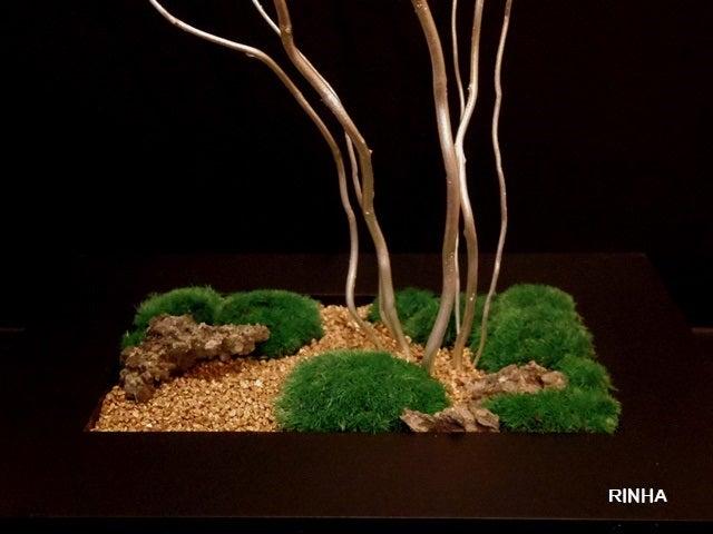 bonsai life      -盆栽のある暮らし- 東京の盆栽教室 琳葉(りんは)盆栽 RINHA BONSAI-琳葉盆栽 苔庭 プリザーブド