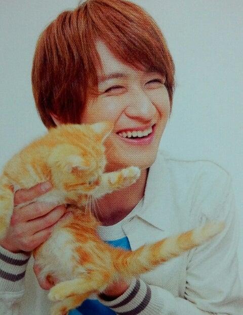 猫kismyft2