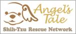 Angel's Tale