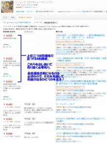 Ponpon ころりん♪ の ドキドキ哀楽日和☆-説明2