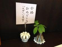 鎌ケ谷ベビーマッサージ・サイン・スキンケア&資格取得スクール-__ 1.JPG__ 1.JPG