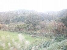 $メイブレラン潟さんのブログ-紅葉している山