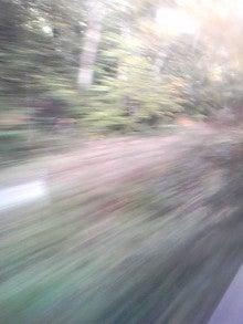 $メイブレラン潟さんのブログ-紅葉している八幡平