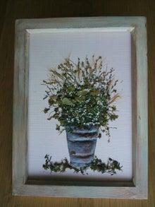 ル*リラ  Le Lilas お花な毎日-1382354359615.jpg