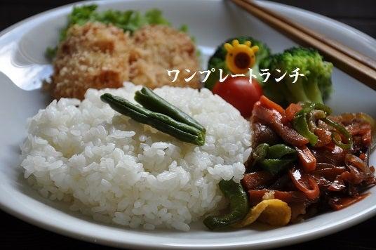 武田真由美オフィシャルブログ ...