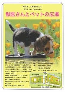 LUNAペットクリニック潮見 オフィシャルブログ-区民まつりポスター