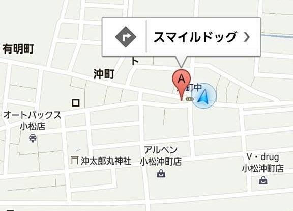 $石川県小松市のトリミングサロン★スマイルドッグ