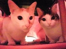 PFL★MIKIのブログ-2013102418060000.jpg