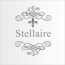 $Stellaireのサロン日記