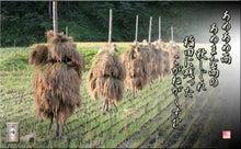 農游徒然日記-フォト短歌「あめあめ雨」