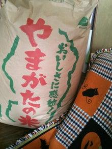 オカメインコのももちゃんと花教室と旅日記-DSC_0799.JPG