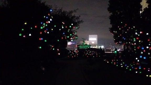 横浜ぶらり百景-ひかりの実8