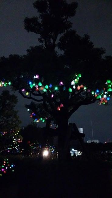 横浜ぶらり百景-ひかりの実5