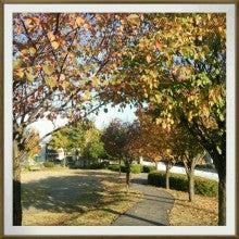 ワイワイfamily-2013-10-28-15-27-49_deco.jpg