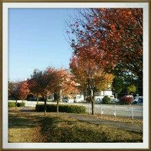 ワイワイfamily-2013-10-28-15-27-17_deco.jpg