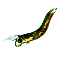 Dr.ミーヤンの下手っぴい釣りブログ-プレッソ クレイジー 45SS ホログリキン