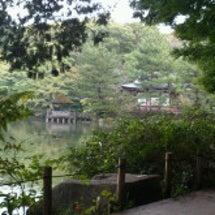 石神井公園散歩中!