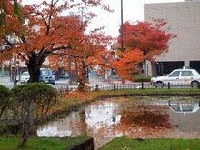 津軽徒然-弘前公園20131031