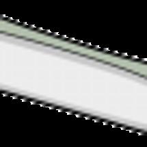 刺身でもいける太刀魚…