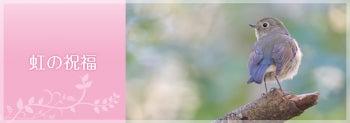 $虹の架け橋 ~天使*精霊たちとともに~-HPリンク
