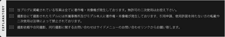 koichiro_blog_explanatory