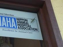 ペットの日帰りレーザー手術が可能な動物病院 動物レーザーセンターのブログ