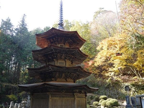 ◆「旅の宿 南條」 in 信州の鎌倉 別所温泉◆ 新米支配人・鈴木隼人の奮闘記!