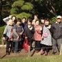 11/6(水) 桜花…