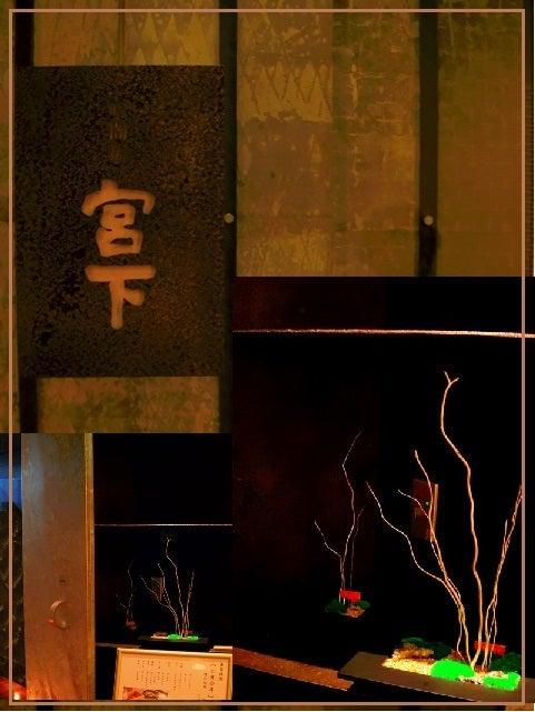 bonsai life      -盆栽のある暮らし- 東京の盆栽教室 琳葉(りんは)盆栽 RINHA BONSAI-苔庭 プリザーブド 琳葉盆栽