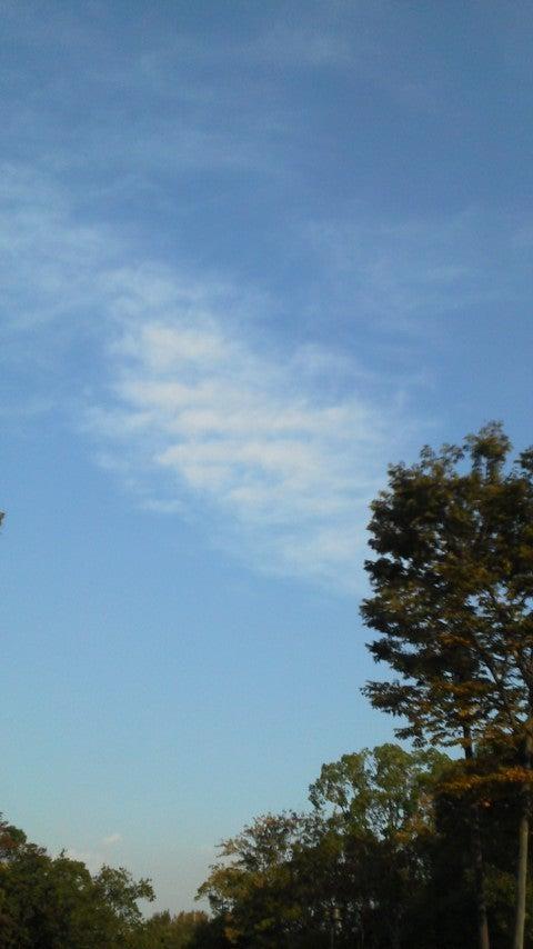 ぱんだのマラソンとお天気ブログ☆目指せサロマ湖100Kウルトラマラソン☆-20131108152352.jpg