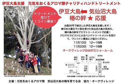 気仙沼大島椿オイル販売 椿の森 ~広がる椿の絆~