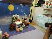 名古屋にあるドッグカフェ・スマイルドッグカフェ-写真こももむむ
