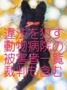 $にゃんこショコラblog