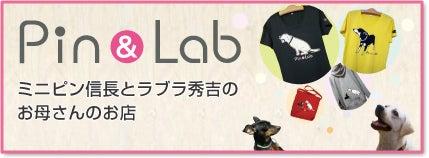 $ミニピン信長&ラブラ秀吉-pinandlab_web_bana
