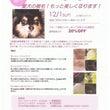 Dog Spa スタ…