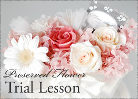Preserved Flower Trial Lesson