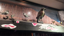「さやまのお店めぐり」-鳥たちが迎えてくれる出入口