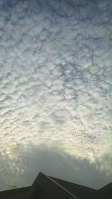 腐ってやがる・・・ぷログ-うろこ雲