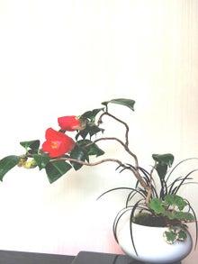 bonsai life      -盆栽のある暮らし- 東京の盆栽教室 琳葉(りんは)盆栽 RINHA BONSAI-琳葉盆栽 椿