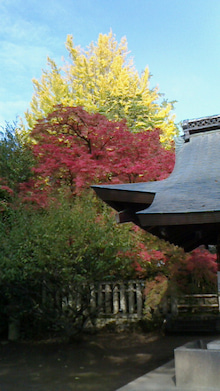 京都・清水五条のエステ ビジュシャンテのオーナーブログ-2013111610340000.jpg