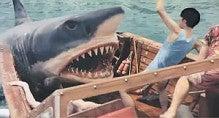 $スマホマーケッターのブログ-サメ