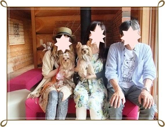 ヨーキー♪ロビンカノン幸せの扉-5ショット