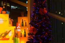 ルチアーノショーで働くスタッフのブログ-クリスマスツリー