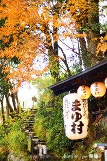 京都散歩の旅-嵐山・嵯峨野の紅葉