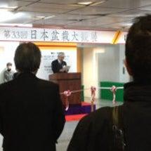 日本盆栽大観展開幕