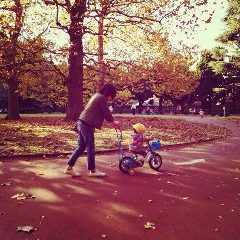 自転車の 子供 自転車 補助輪 外し方 : ... けど 補助 輪 外 しの 時期 が